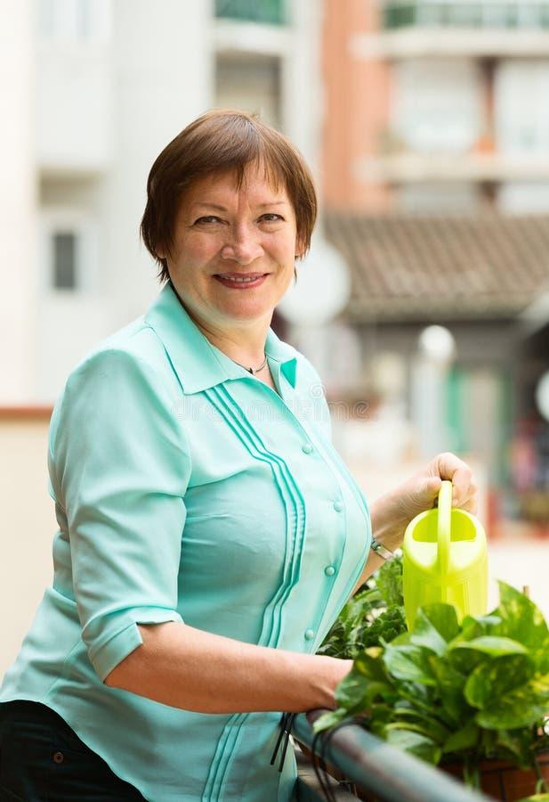 Portret nawadnia domowe rośliny starsza kobieta fotografia stock