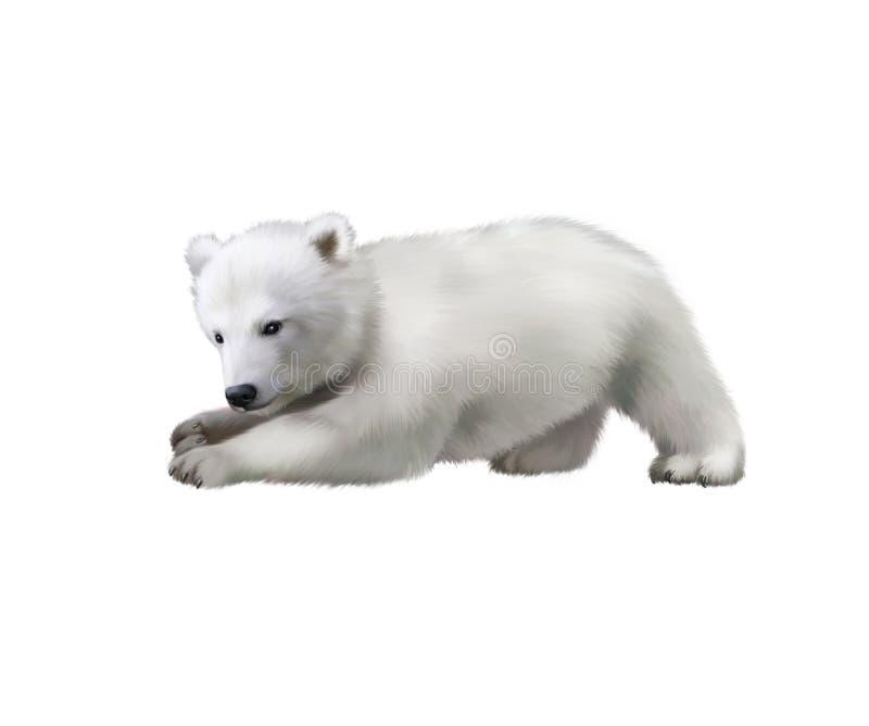 Portret niedźwiedzia polarnego dziecko bawić się w śniegu zdjęcie royalty free