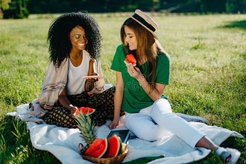 Portret op een picknick van twee mooie jonge vrienden van het multi-rasmeisje met natuurlijke samenstelling en mooie glimlachen g royalty-vrije stock afbeelding