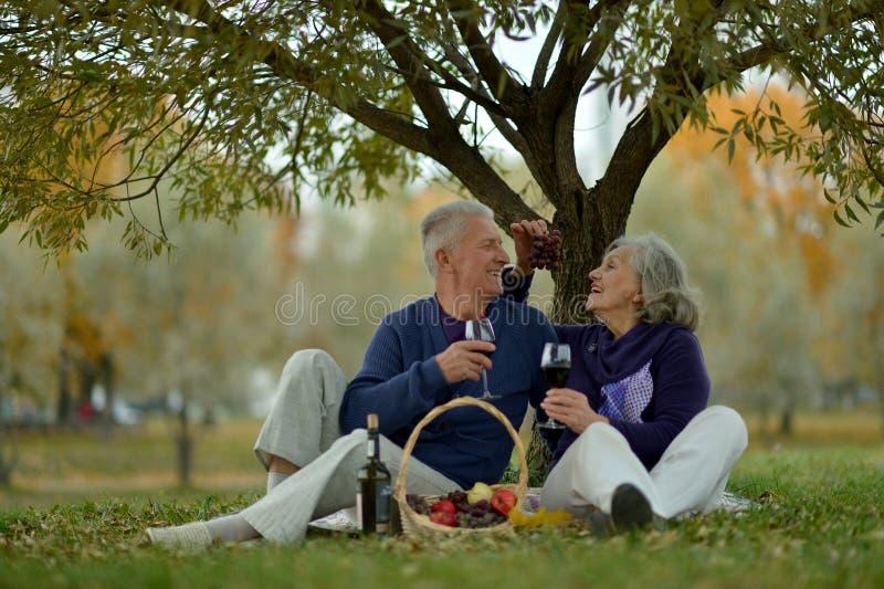 Portret pary starszej z piknikiem na zewnątrz obrazy royalty free