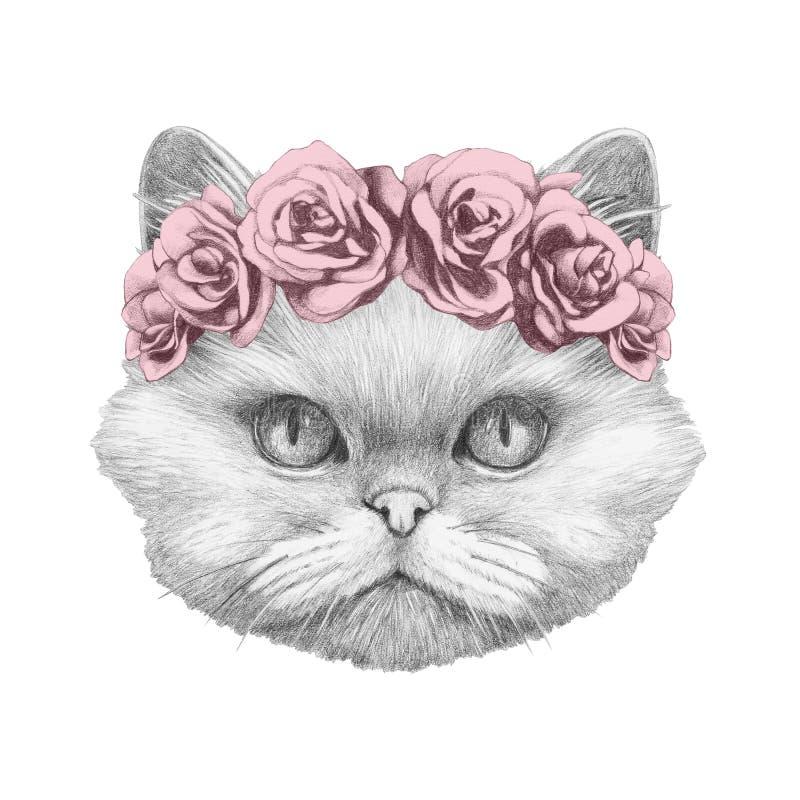 Portret Perski kot z kwiecistym kierowniczym wiankiem royalty ilustracja