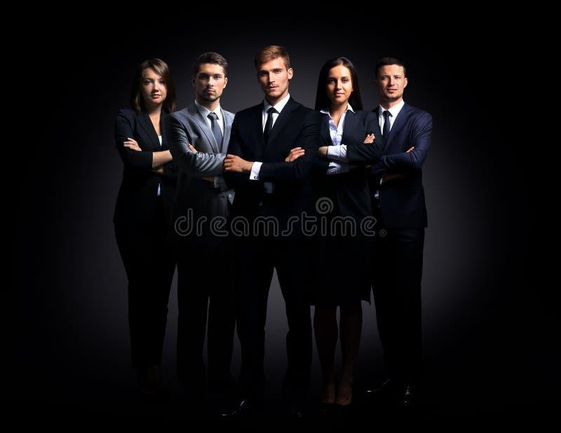 Portret pięć ludzi biznesu stać obrazy stock