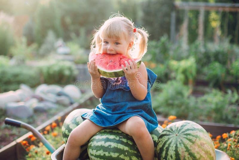 Portret piękna blondynki mała dziewczynka je arbuza z dwa ponytails zdjęcie royalty free