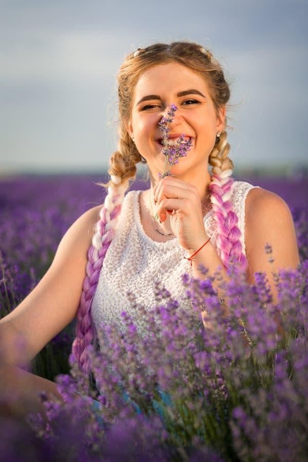 Portret piękna dziewczyna z długimi warkoczami w lawendy polu Obwąchiwać sprig lawenda zdjęcie royalty free