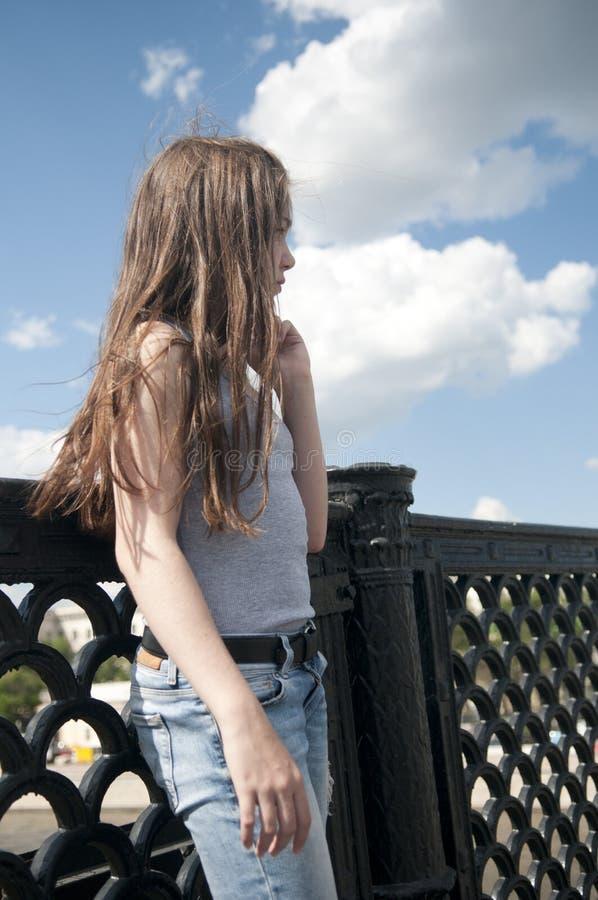 Portret piękna młoda dziewczyna na bridżowym niebieskiego nieba tle z podmuchowym włosy w wiatrze obraz stock