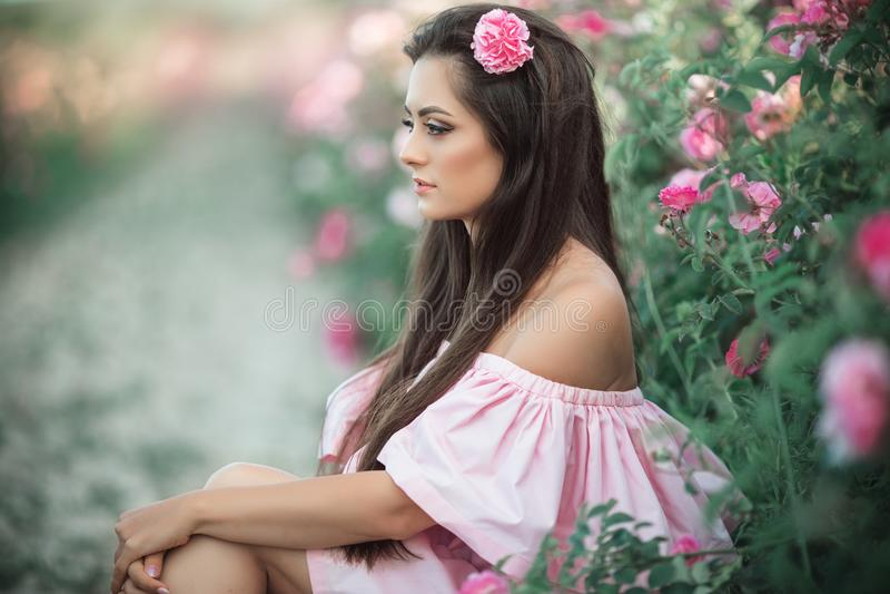 Portret piękna młoda kobieta siedzi w różowym kwitnącym ogródzie różanym Pojęcie pachnidło reklama zdjęcie royalty free