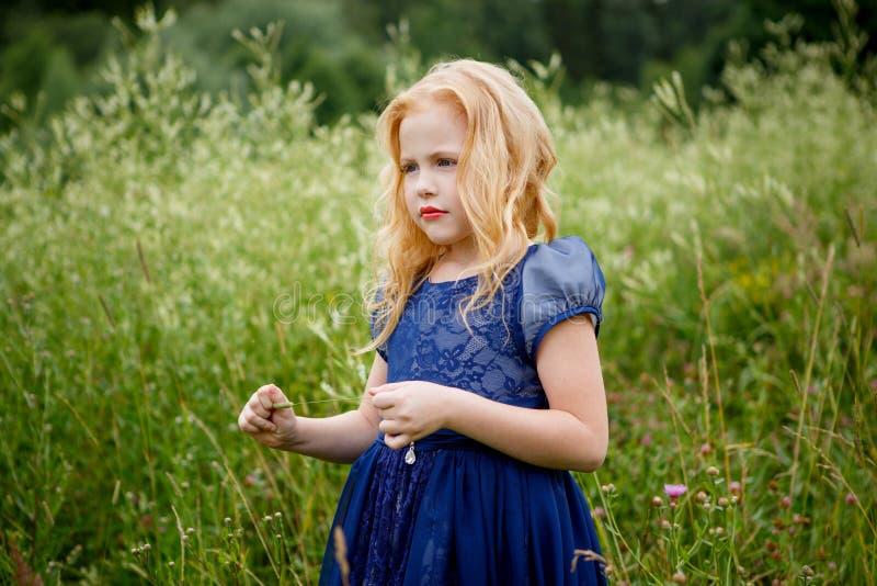 Portret piękna mała dziewczynka w błękitnej sukni fotografia royalty free