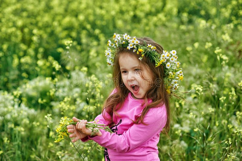 Portret piękna mała dziewczynka w wianku stokrotki zdjęcia stock
