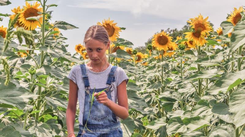 Portret piękna nastoletnia dziewczyna w słonecznikowym polu obraz stock