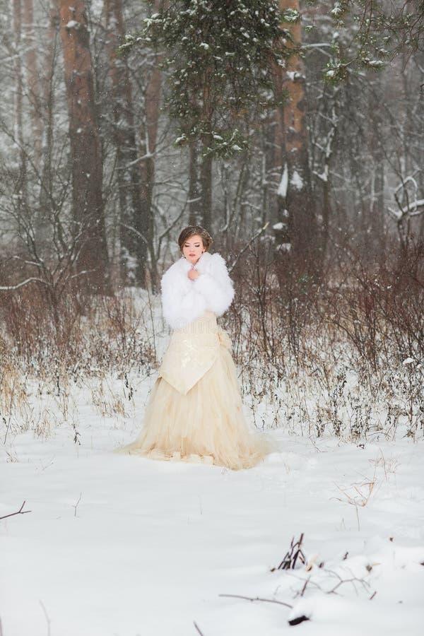 Portret piękna zimy panna młoda obraz stock