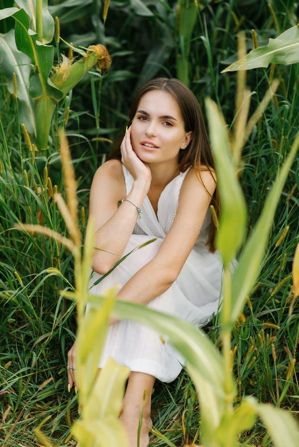 Portret pięknej dziewczyny z profesjonalnym makijażem Nude dziewczyna w białej sukience siedząca na polu kukurydzy obraz stock