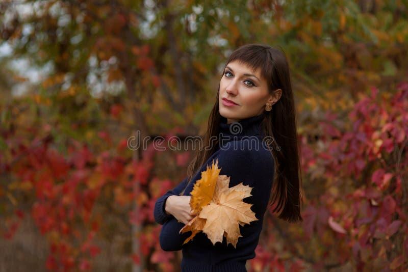 Portret pi?kna ?liczna m?oda kobieta Pozowa? na z?otym jesieni natury tle bedsheet moda k?a?? fotografii uwodzicielskich bia?ej k zdjęcia royalty free