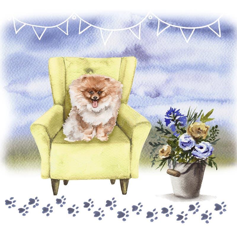 Portret pies w krześle troszkę pojedynczy bia?e t?o ilustracji