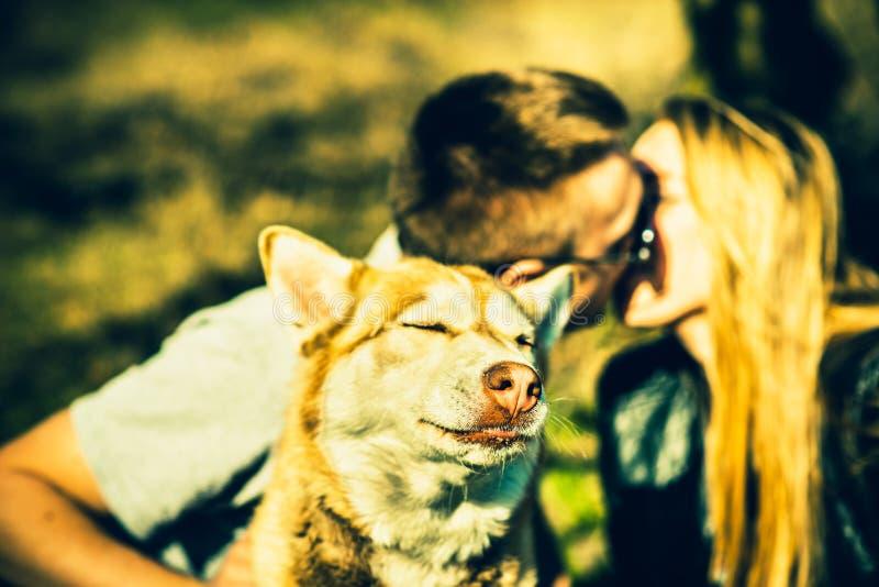 Download Portret Plenerowy Z Całowanie Parą Behind Husky Pies Obraz Stock - Obraz złożonej z para, zabawa: 53779391