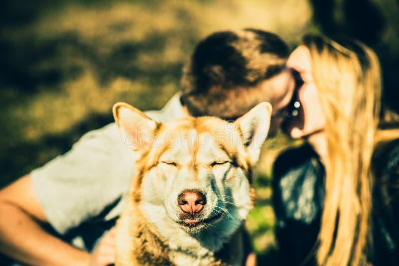 Download Portret Plenerowy Z Całowanie Parą Behind Husky Pies Obraz Stock - Obraz złożonej z ręki, datowanie: 53779445