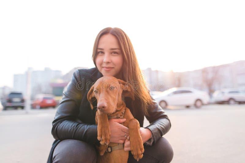 Portret psa i dziewczyny właściciel przeciw tłu zmierzch Spacer z zwierzęciem domowym w mieście fotografia stock