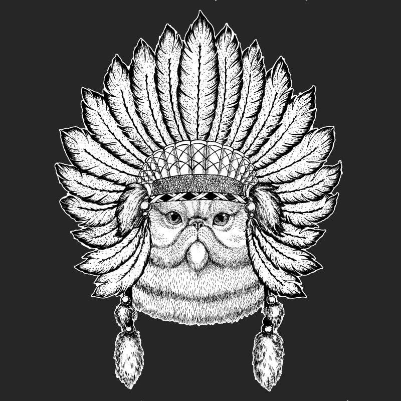 Portret puszystego perskiego kota boho pióropuszu Tradycyjnego etnicznego indyjskiego Plemiennego szamanu kapeluszowy Ceremonialn ilustracji