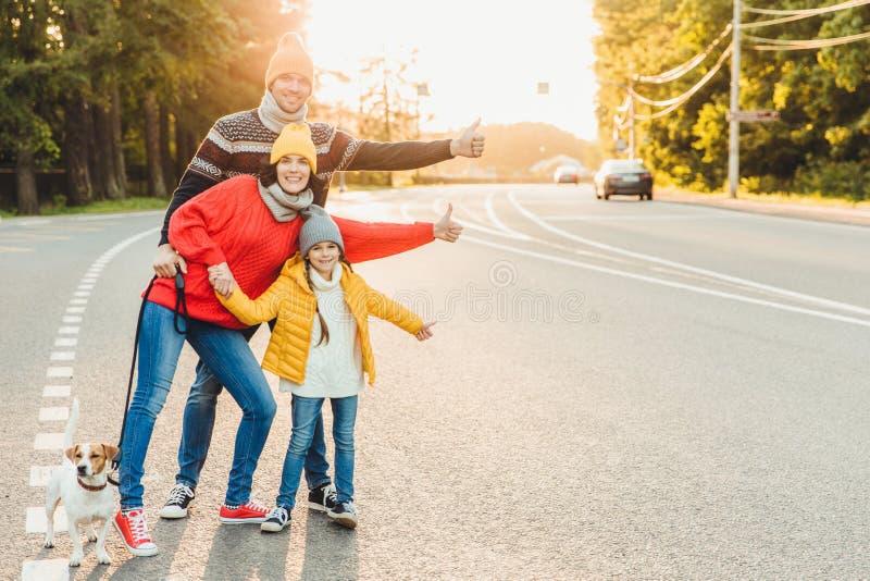 Portret rodzina: matka, ojciec i mała córka, chodzimy z zwierzęciem domowym, stoimy na drodze, podwyżka kciuki jako przedstawieni obraz stock