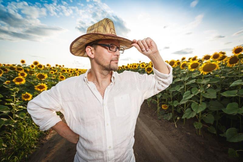 Portret rolnik w słomianym kapeluszu w słonecznikowym polu zdjęcia royalty free