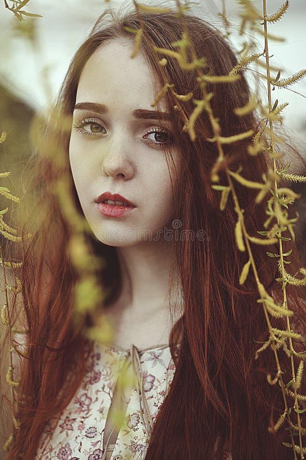 Portret romantyczna dziewczyna z czerwonym włosy w wiatrze pod wierzbowym drzewem obrazy stock
