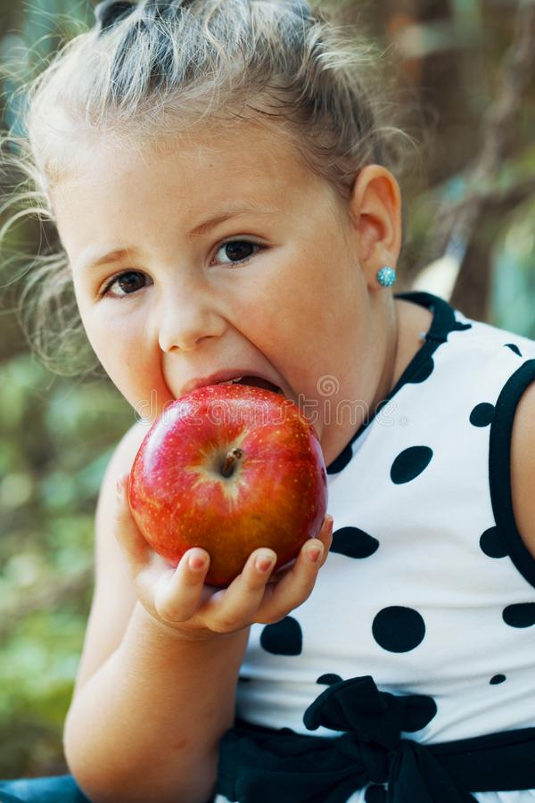 Portret słodka mała szczęśliwa dziewczyna podczas gdy jedzący jabłka obraz stock