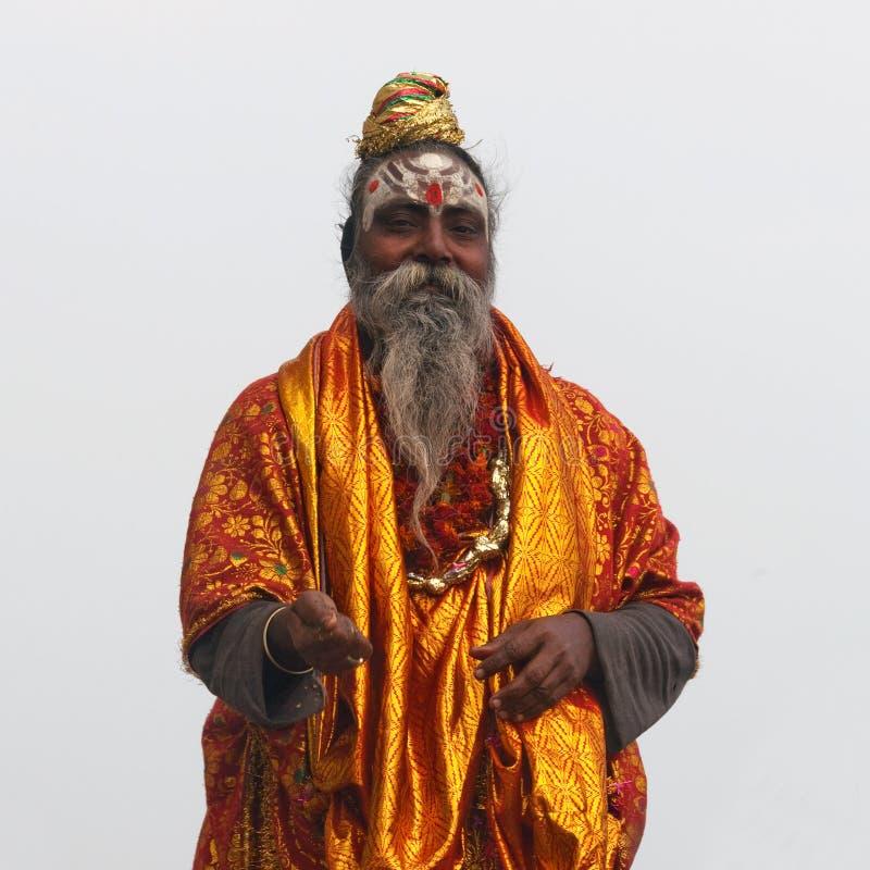 Portret Sadhu, India obrazy stock