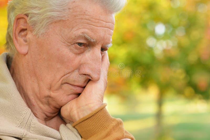 Portret smutny starszy m??czyzna w parku obraz stock