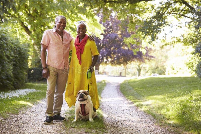 Portret Starszy pary odprowadzenia zwierzęcia domowego buldog W wsi obraz royalty free
