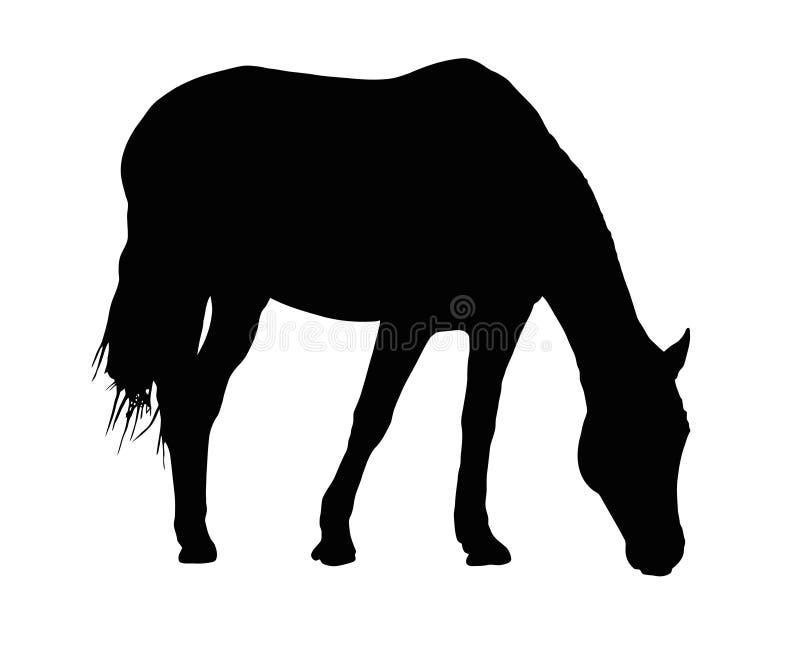 Portret sylwetka Wielki Koński pasanie ilustracja wektor