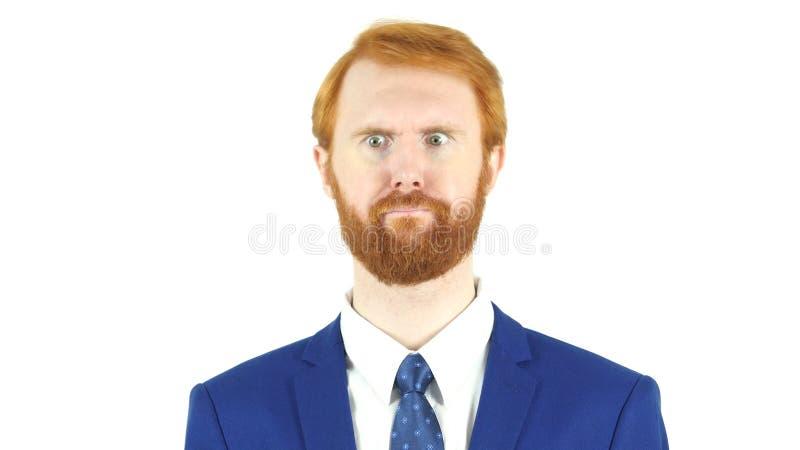Portret Szalony Zmieszany Czerwony Włosiany broda biznesmen obraz royalty free