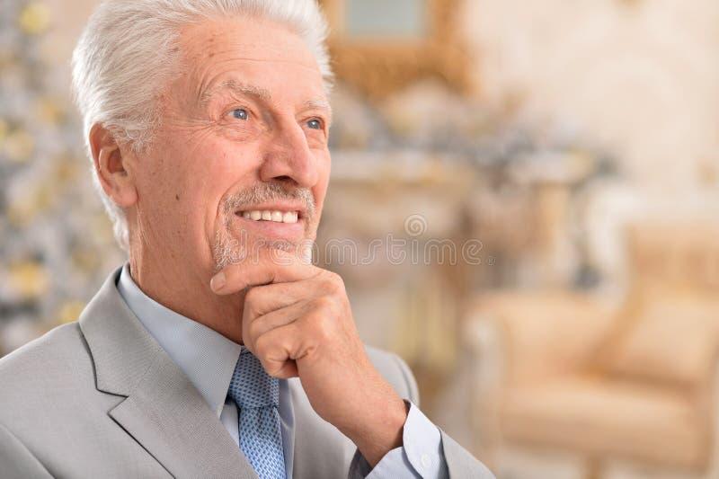 Portret szczęśliwy uśmiechnięty starszy biznesowy mężczyzna obraz stock