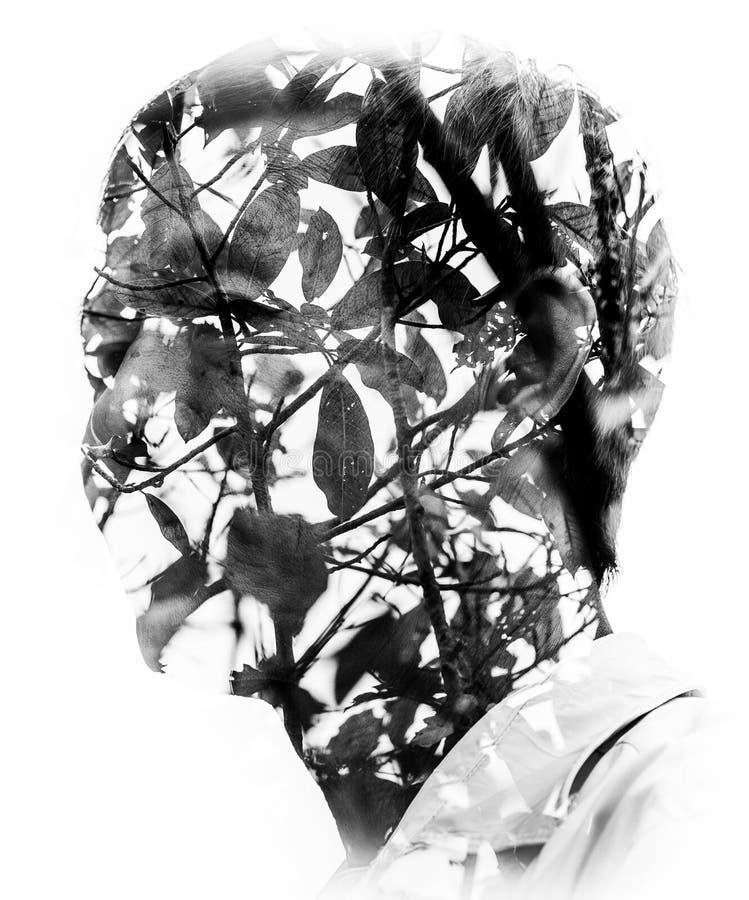 Portret sztuka piękna zdjęcie stock