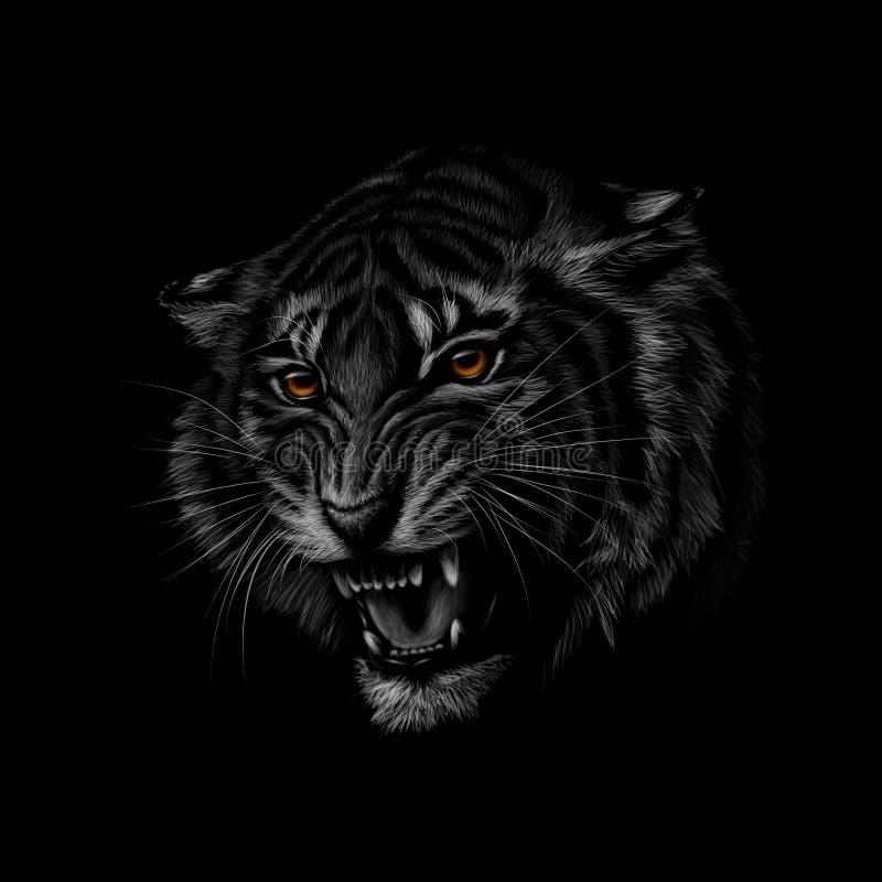 Portret tygrysia głowa na czarnym tle ilustracji
