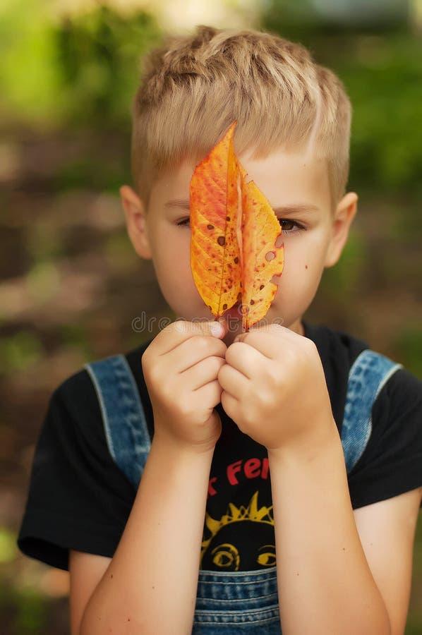 Portret uśmiechać się siedem roczniaka chłopiec Siedem roczniaka chłopiec z zdjęcia royalty free