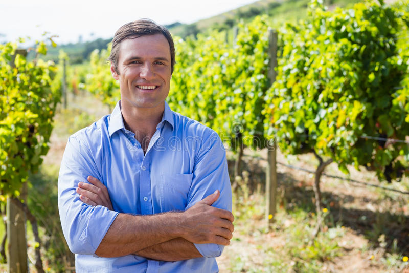 Portret uśmiechnięta vintner pozycja z rękami krzyżować obrazy royalty free