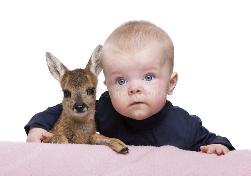 Download Portret Van Babyjongen Met Damherten Fawn Stock Afbeelding - Afbeelding bestaande uit huisdier, schepsel: 10781005