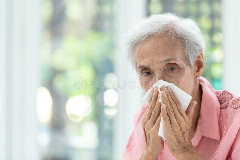 Portret van bejaarde blazende neus in document zakdoek, lopende neus die, Aziatische hogere vrouw in een weefsel, concept niezen  royalty-vrije stock afbeelding