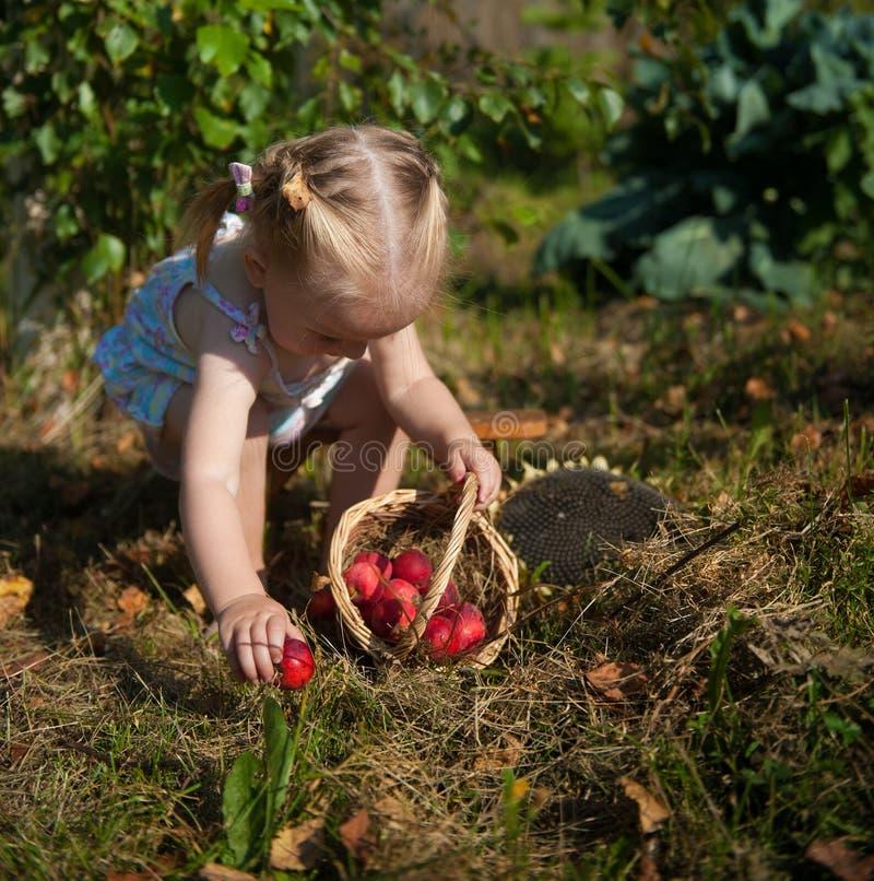 Portret van blondemeisje met rode appelen stock foto