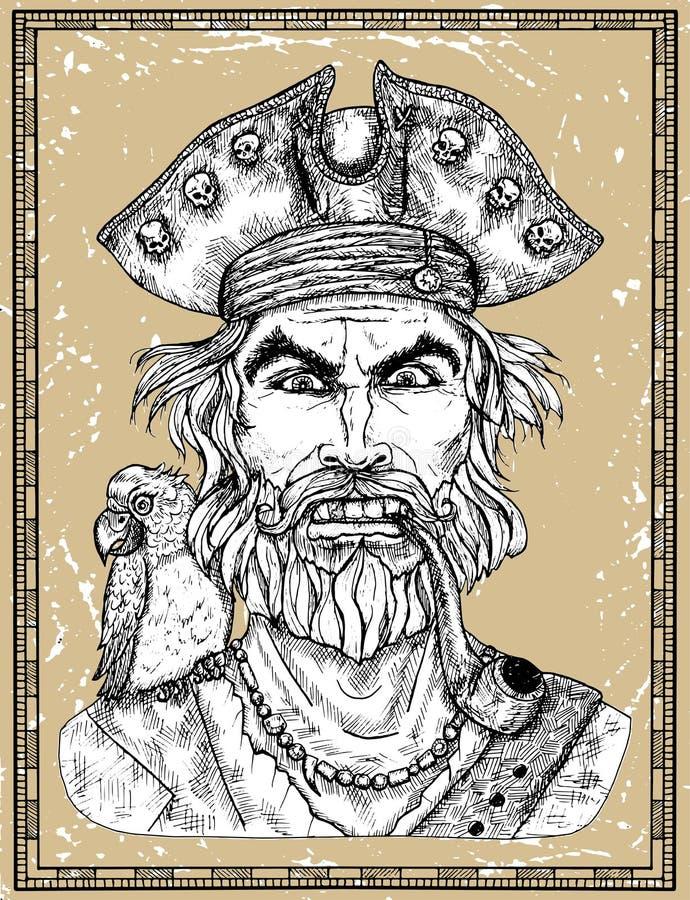 Portret van boze piraatkapitein met baard en papegaai op textuurachtergrond royalty-vrije illustratie