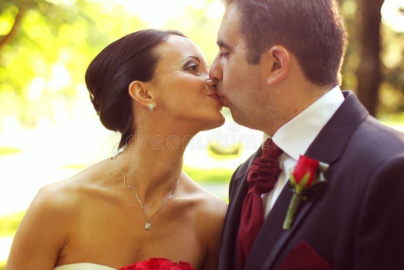 Portret van bruid en bruidegom het kussen stock afbeelding