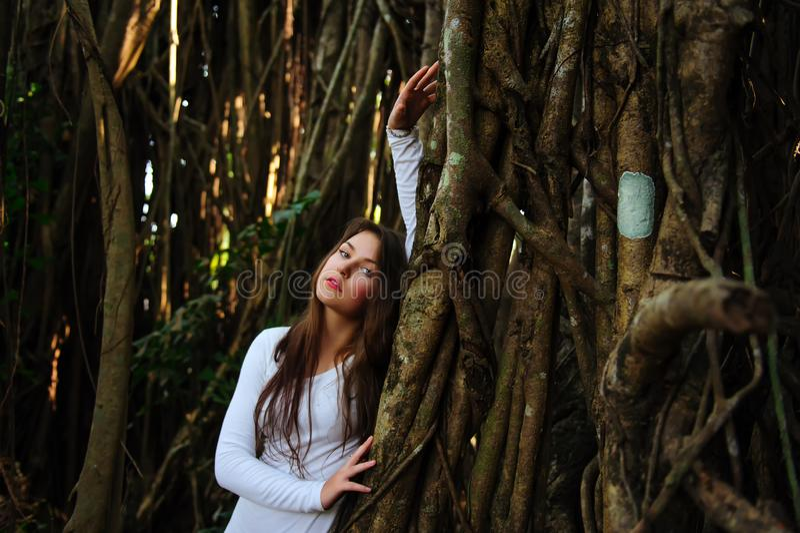 Portret van brunette met lang haar op de achtergrond van houten takken of lianas Jong mooi meisje dichtbij de boomstam van groot stock afbeeldingen