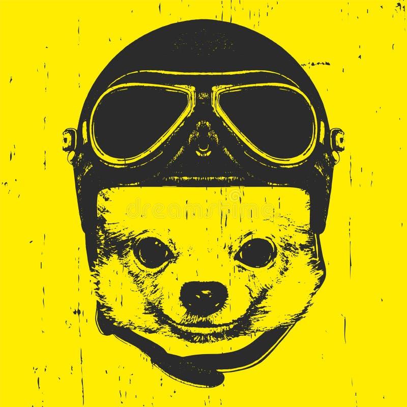 Portret van Chihuahua met Uitstekende Helm vector illustratie