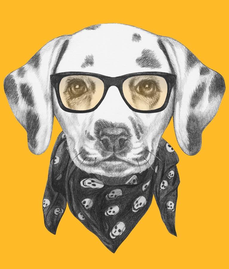 Portret van Dalmatische Hond met glazen en sjaal royalty-vrije illustratie