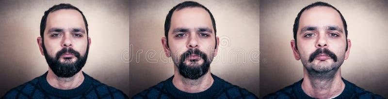 Portret van de gebaarde man stock afbeelding