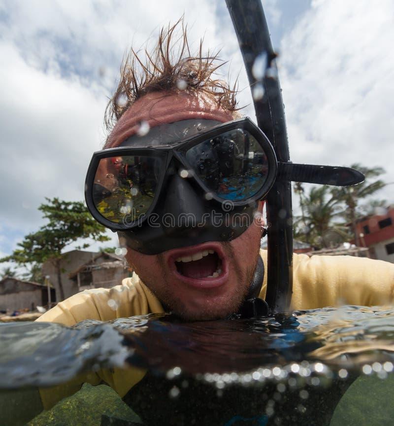 Portret van de gekke duiker royalty-vrije stock fotografie
