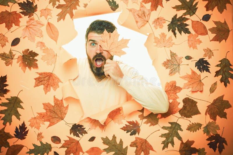 Portret van de de herfstmens Autumn Leaves Background Exemplaarruimte voor tekst Embleem voor uw Zwarte vrijdag Modelgezicht geba royalty-vrije stock foto