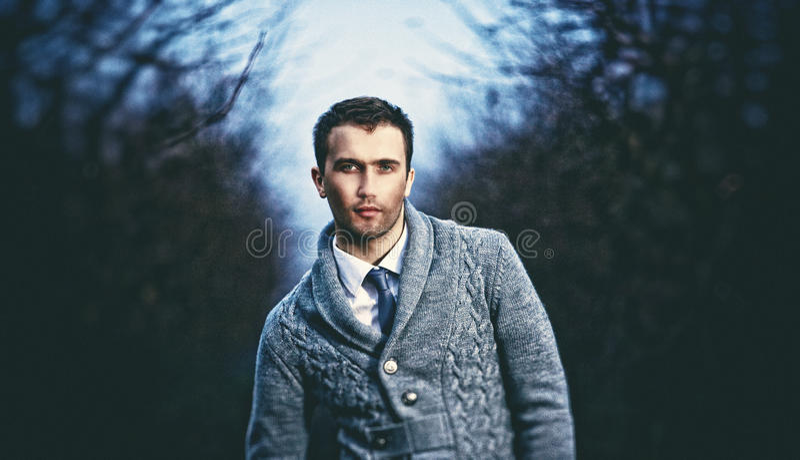portret van de jonge aantrekkelijke mens stock fotografie