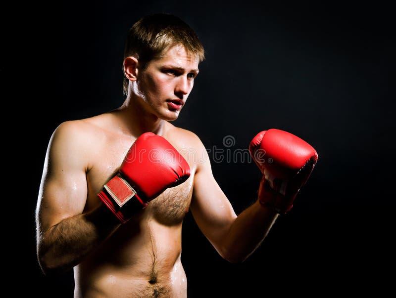 Portret van de jonge mens met bokshandschoenen royalty-vrije stock foto's