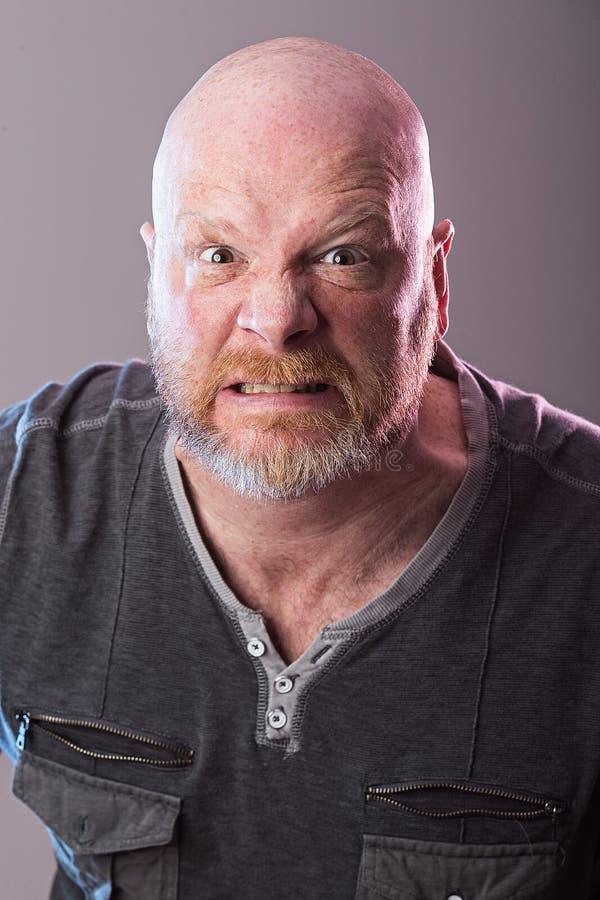 Portret van de kale mens met baard stock afbeelding