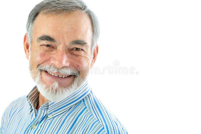 Portret van de knappe hogere mens stock foto's